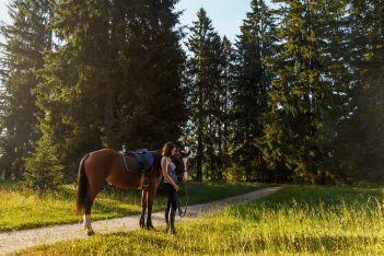Cet été, dès 2 nuits de séjours, profitez d'un bon pour une balade à cheval et découvrez en famille la magnifique région du Jura à califourchon .