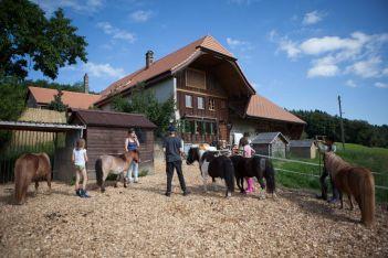 Culture, aventure et détente : profitez d'une escapade de deux jours pour découvrir en famille la magnifique région de Romont !