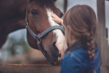 L'IENA propose des journées découvertes ludiques et amusantes pour les enfants axées sur l'univers du cheval !