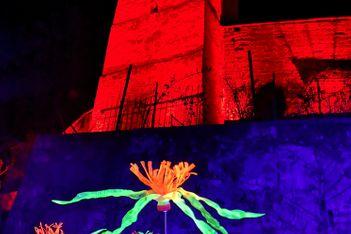 Du 3 au 28 mars 2021, parcours illuminé et artistique au coeur de Morat (Murten)