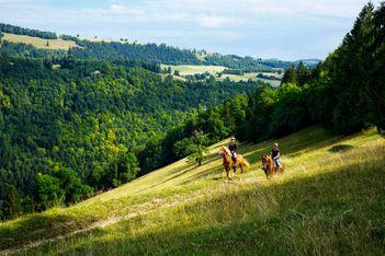 Découvrez 6 offres irrésistibles pour des séjours avantageux dans la région Jura & Trois-Lacs