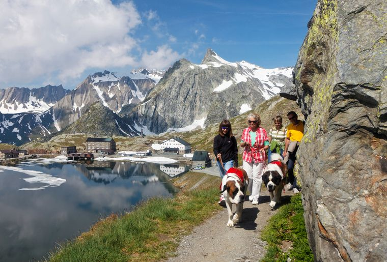 5 Balade d'été au Col du Grand St Bernard (c) Iris Kürschner, powerpress.ch.jpg