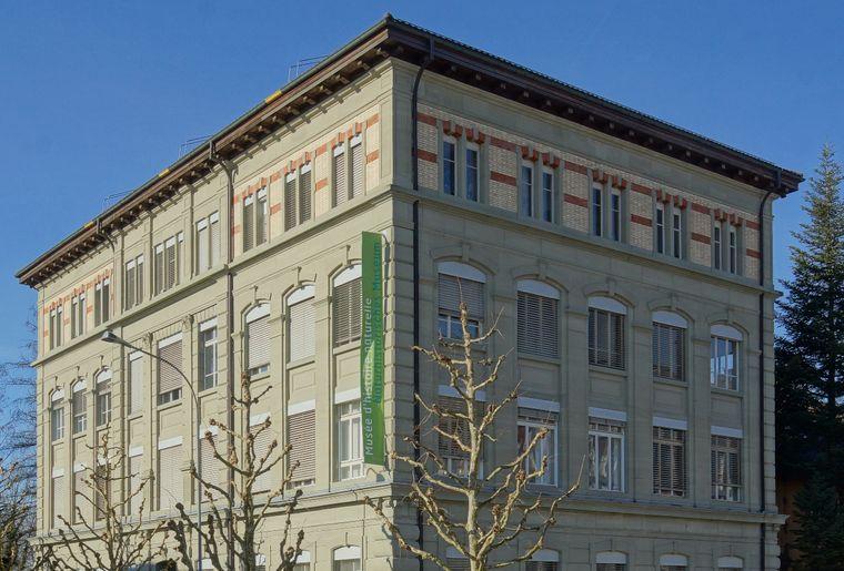 Photo_Bâtiment Musée.jpg