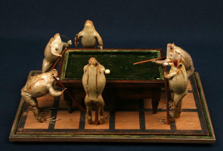 musee-estavayer-grenouilles-4.jpg