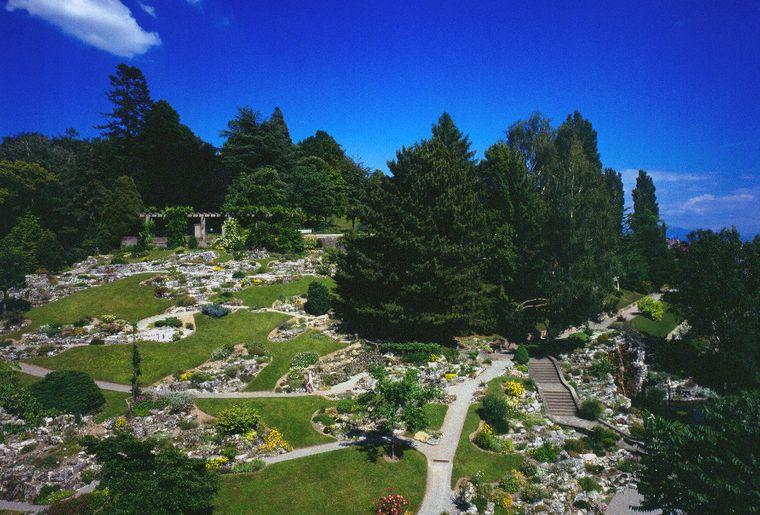 Mus e et jardins botaniques cantonaux activit for Au jardin des deux ponts