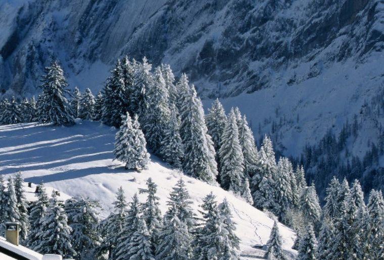 Miroir hiver vue depuis village gryon5.jpg