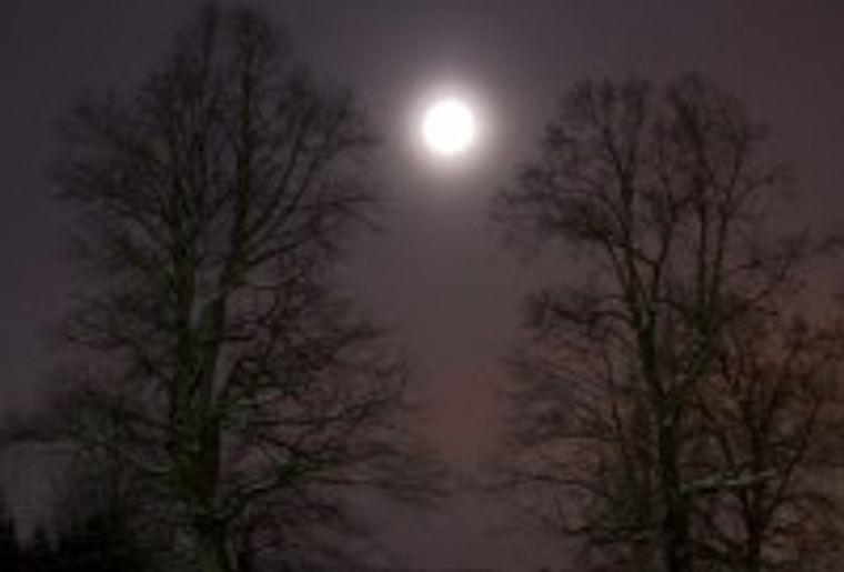 neige-et-pleine-lune-47048f80-a544-432e-a8ee-3b7f918b7ab1-200x300.jpg