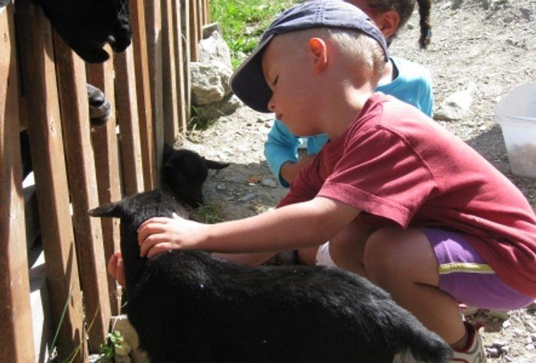 La Ferme Pédagogique d'Hérémence (VS) permet de découvrir la vie à la ferme.JPG