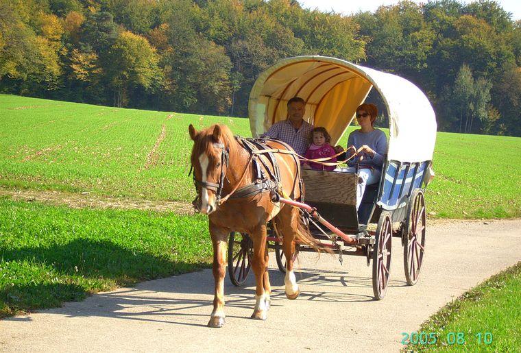 Tourisme Equestre.jpg