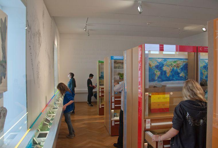 Muséum d'histoire naturelle de Neuchâtel 1.jpg