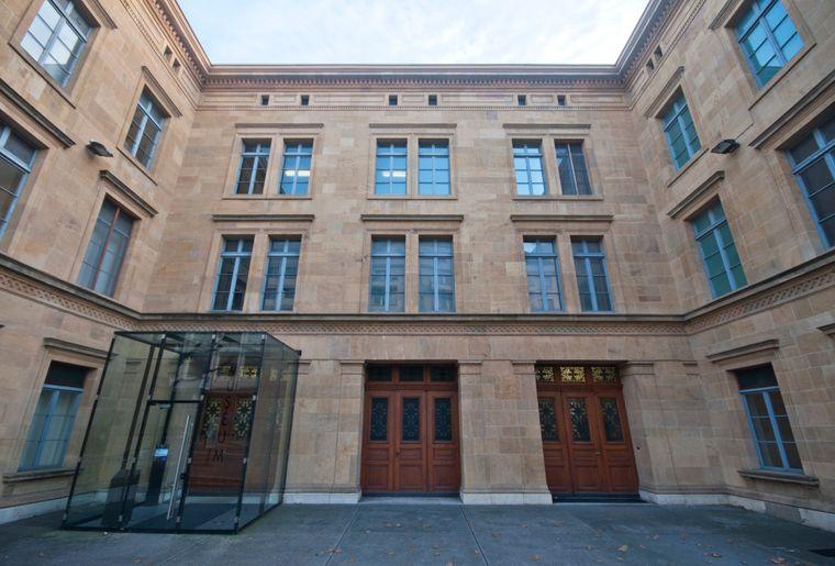 Muséum d'histoire naturelle de Neuchâtel 7.jpg