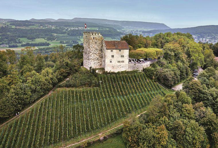 Schloss_Habsburg.jpg