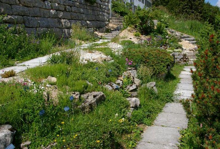 01jpg_Botanischer_Garten_Weissenstein_.jpg