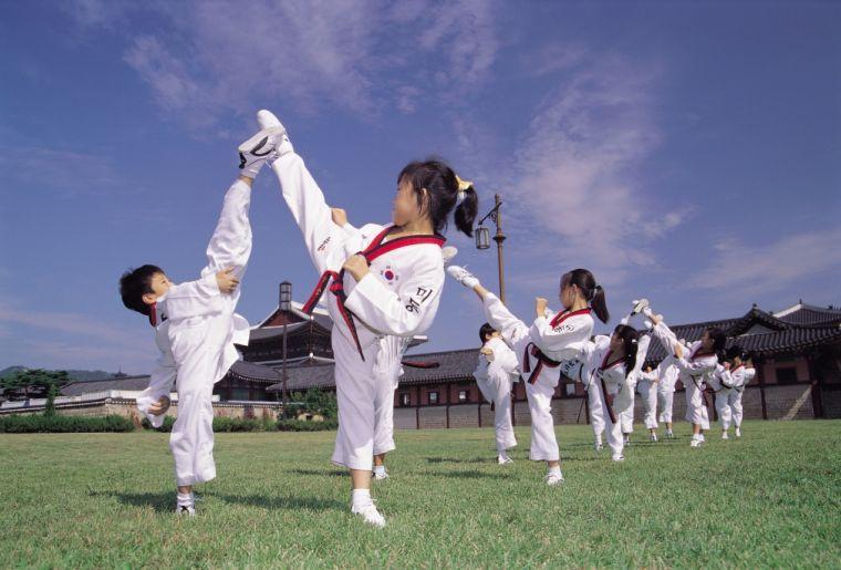 429_3320009200510008h_Taekwondo-Traditional Korean Martial Art, New Look of Seoul .jpg