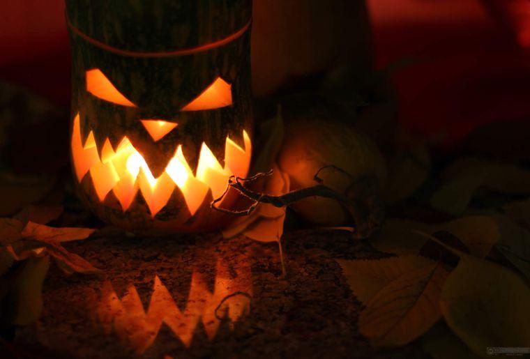 Lumière-de-citrouille-Halloween-1383167776_90.jpg