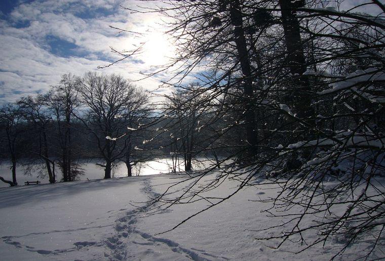 sites_naturels_Etang_Bonfol_hiver.jpg