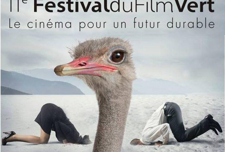 Image Festival2.jpg
