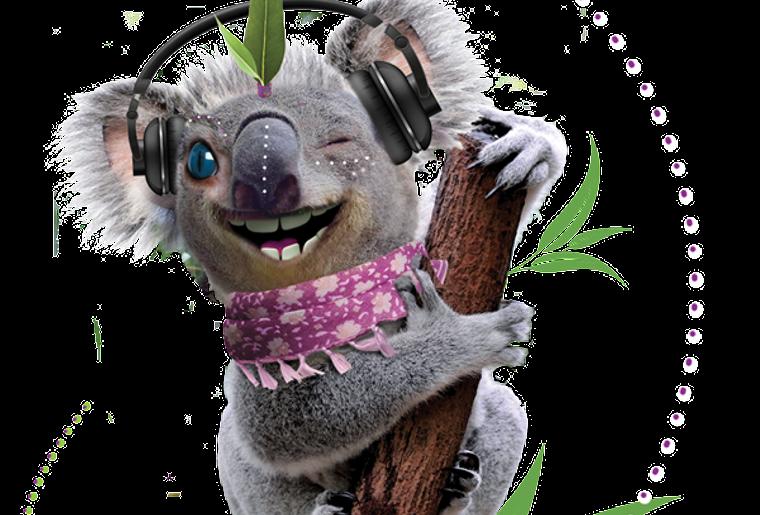 koala_2016.png