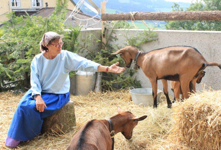 Croisade des chèvres 3.jpg