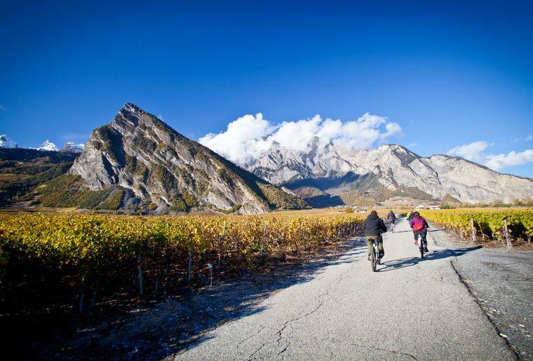 Balade à vélo dans le vignoble de Chamoson (VS).jpg