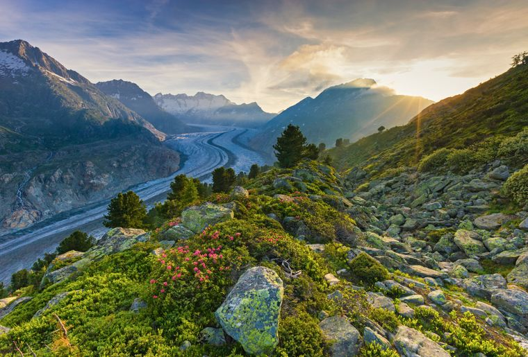 Grand glacier d'Aletsch (VS) - Switzerland Tourism.jpg