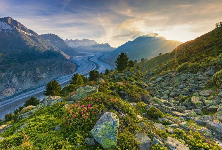 grand-glacier-aletsch.jpg