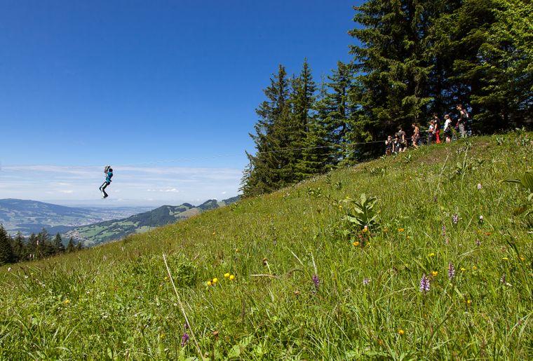 Vallée des Tyroliennes à Charmey Aventure (FR) - Guillaume Perret.jpg
