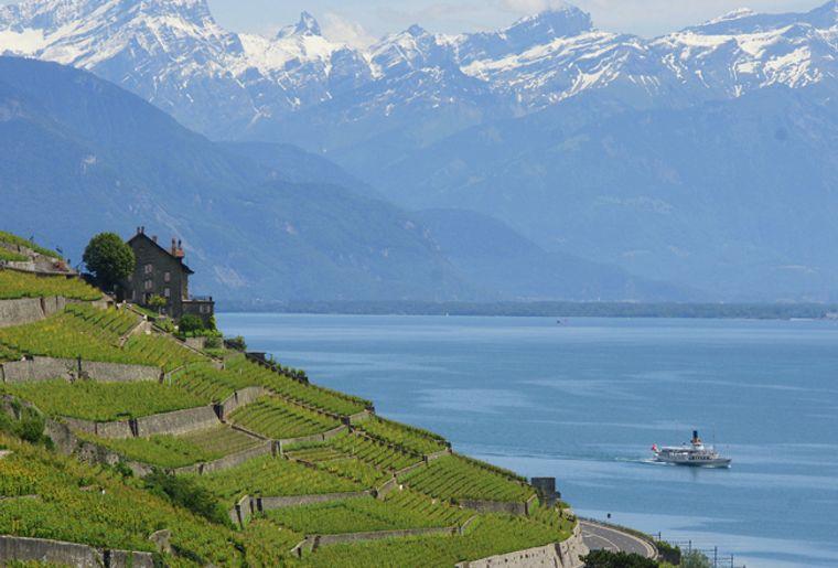 Vignoble en terrasses de Lavaux (VD) - CGN.JPG