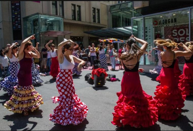 flamenco3.PNG