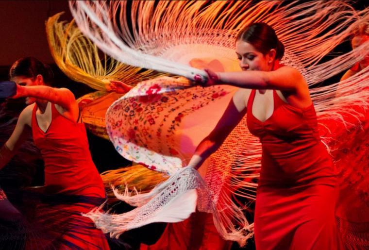 flamenco4.PNG
