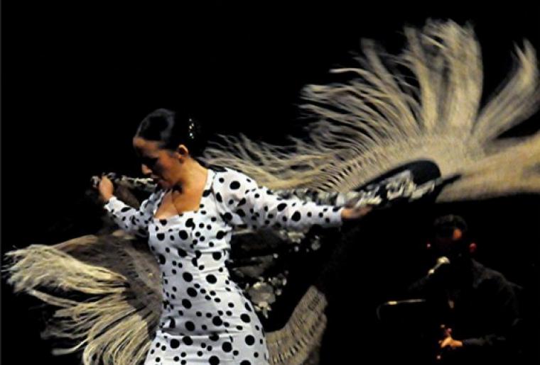 flamenco2.PNG