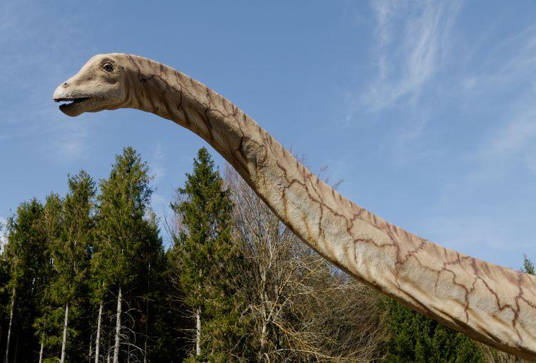DinosaureHerbivore2-TBasset.jpg