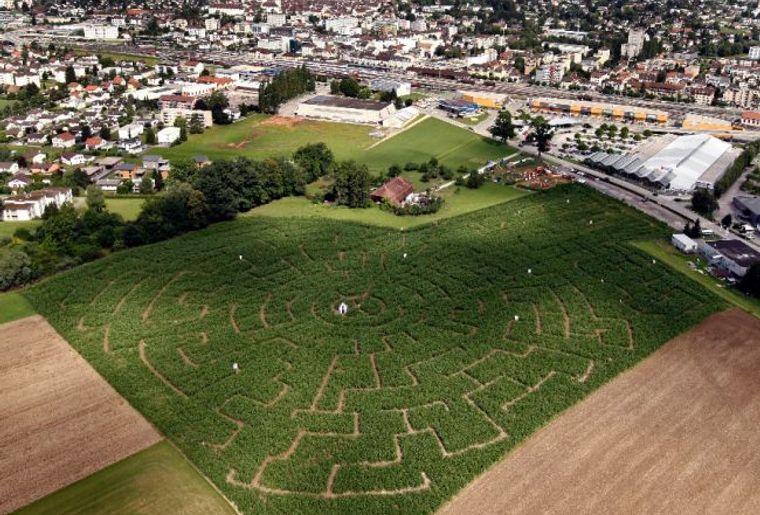 Swiss Labyrinthe.jpg