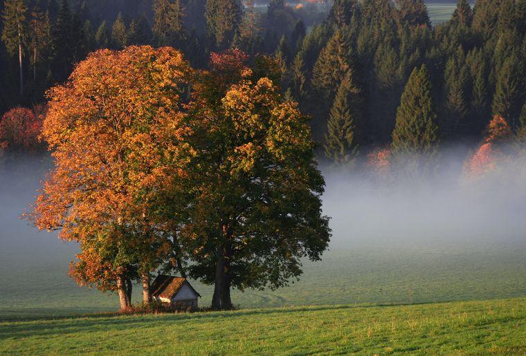 3 © République et Canton du Jura - Jura Tourisme.jpg