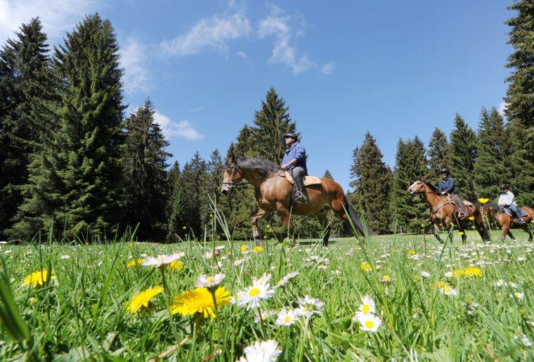 6 © République et Canton du Jura - Jura Tourisme.jpg