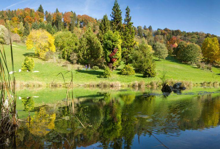 Arboretum d'Aubonne.jpg