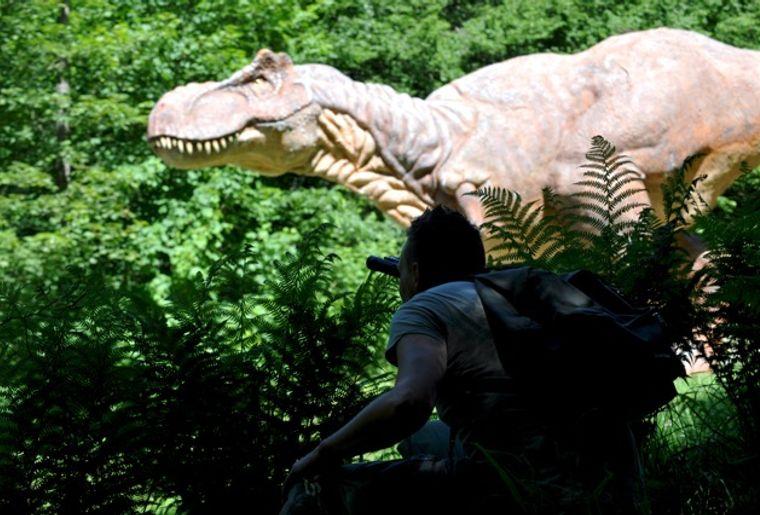 dino-zoo-T-rex.jpeg