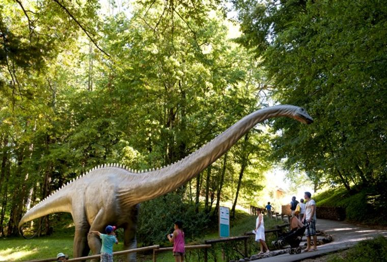 dino-zoo-diplodocus.jpeg