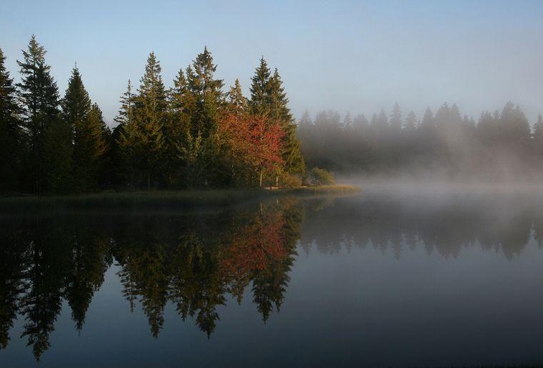 sites_naturels_etang_gruere1_automne.jpg