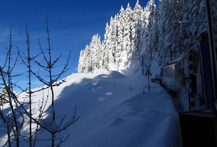 Prochain arrêt, Rochers-de-Naye, gare terminus @ Montreux Noël.jpg