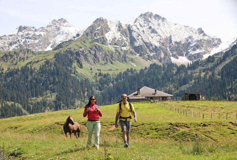 Alpes vaudoises été.JPEG