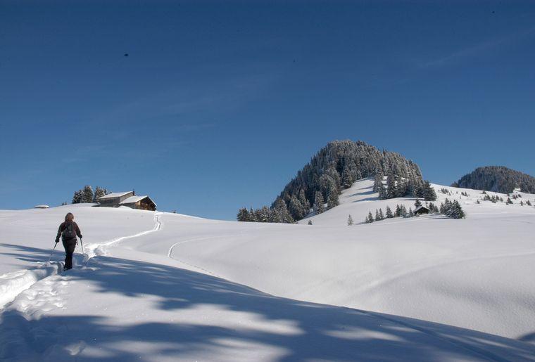 3 Raquette a neige Chateau doex ©Parc naturel régional Gruyère Pays Enhaut.jpg
