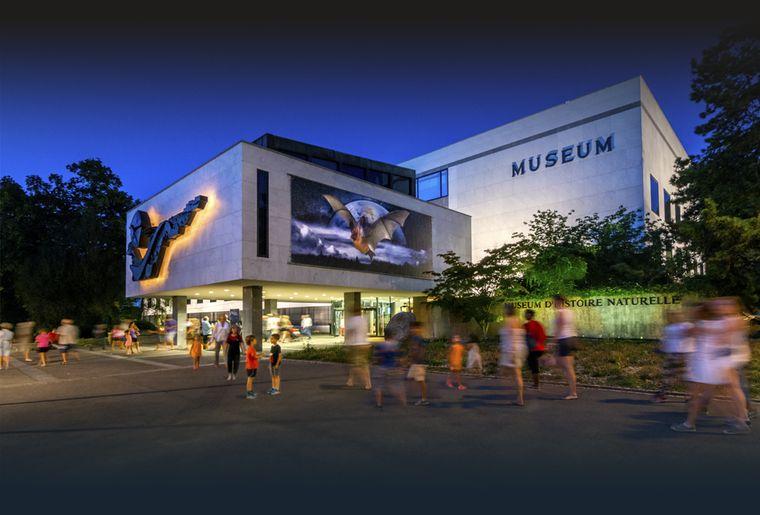 mhng-musee-museum-geneve-histoire-naturelle.jpg