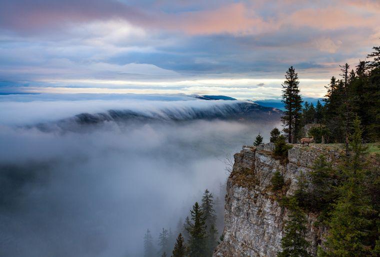creux-du-van-falaise-brouillard-loisirs.ch.jpg