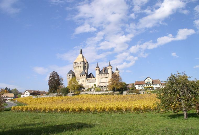 Vufflens-Le-Château ©MRT (19).JPG