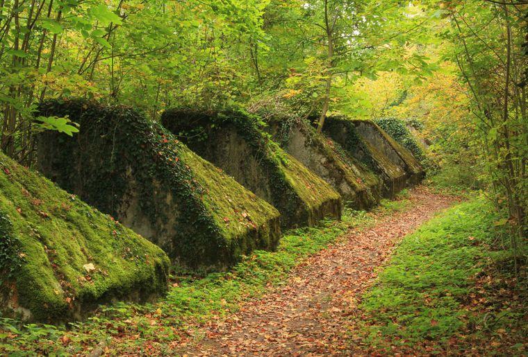 sentier toblerones (c) Région du Léman.JPG