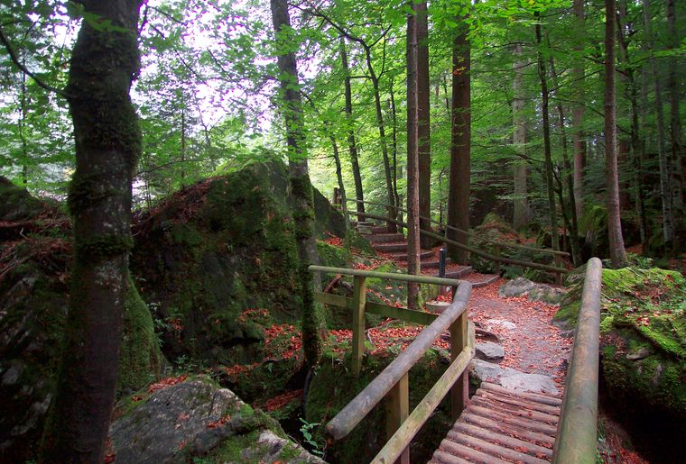 blausee_naturpark_08.jpg