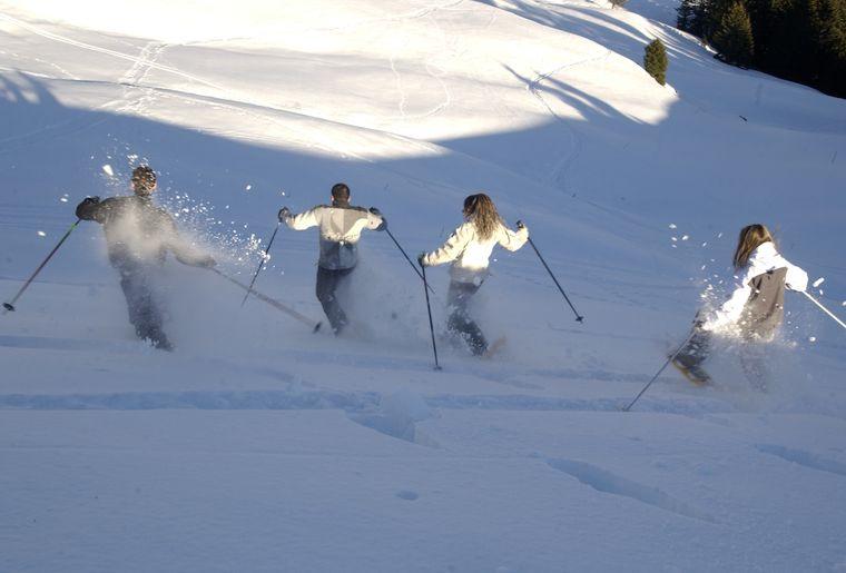 Snowshoe_tour.jpg