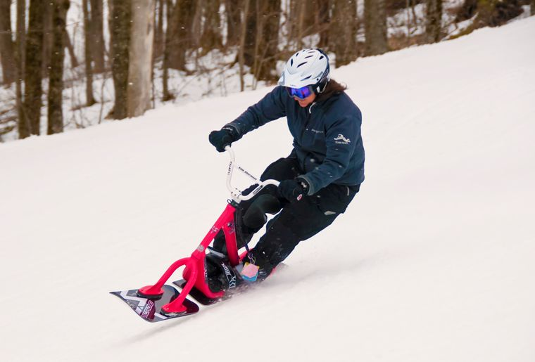snowscoot_.jpg