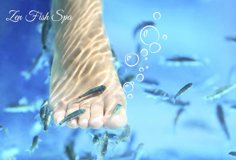 foto-fish2.jpg